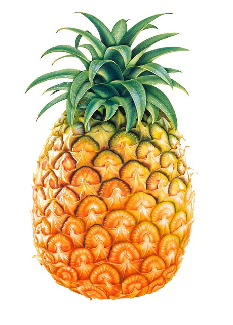Tasty_Pineapple