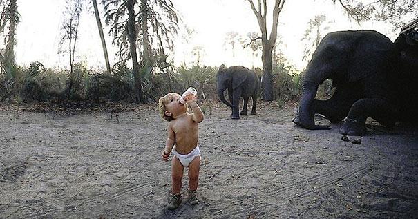 real-life-mowgli-tippi-degre-african-wildlife-15