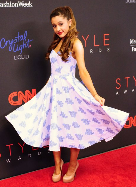 The 2013 Style Awards