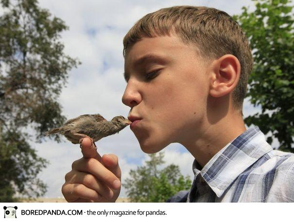 unusual-friendship-boy-sparrow-vadim-veligurov-2